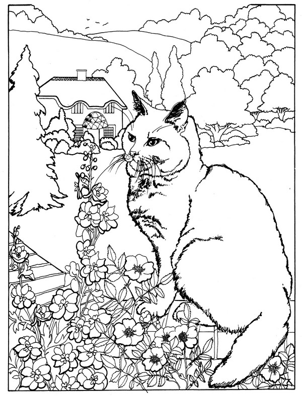 Addiction Recovery Coloring Pages