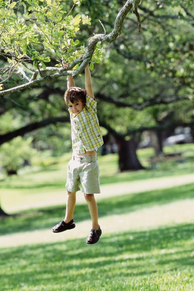 Boy Swinging from Tree