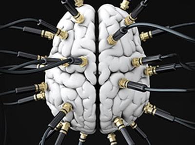 Brain-0001.jpg